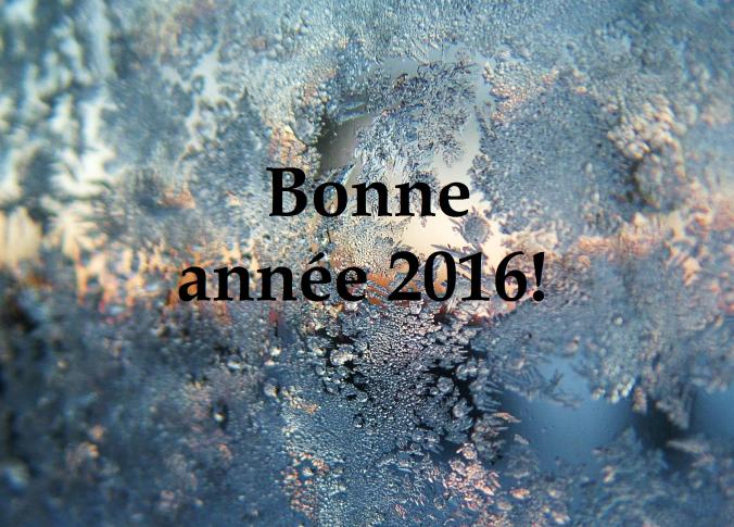 voeux 2016 rogné