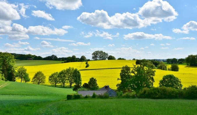 landscape-3369304_1920.jpg